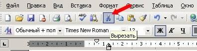 Копирование текста из документа в документ