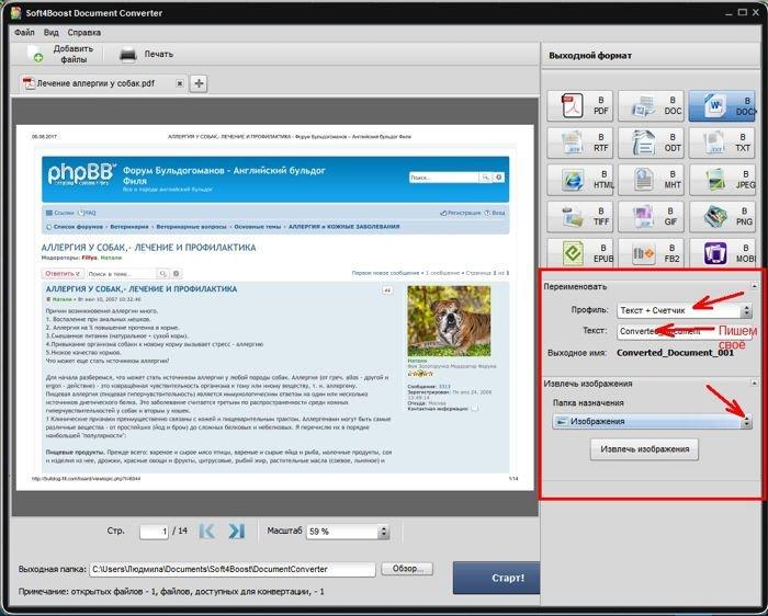 Если необходимо, то ниже есть возможность переименовать преобразованный файл или извлечь из него картинки.
