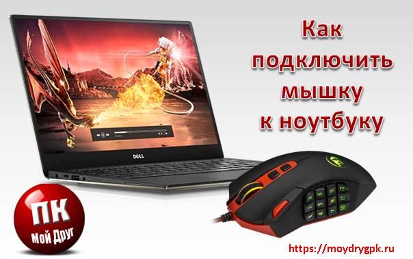 Как подключить мышку к ноутбуку