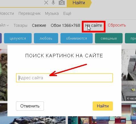 Фильтр На сайте  Позволяет найти картинки, которые имеются на определенном сайте.