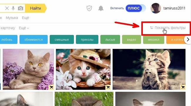 Для включения достаточно кликнуть левой кнопкой мыши по ссылке «Показать фильтры».