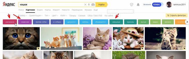 Чуть ниже включенных фильтров находятся цветные кнопки, кликая по которым можно отфильтровать поиск картинок по более узким темам.