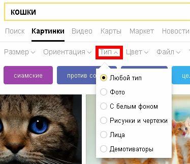 В фильтре «Тип» можно установить поиск картинок по следующим параметрам: