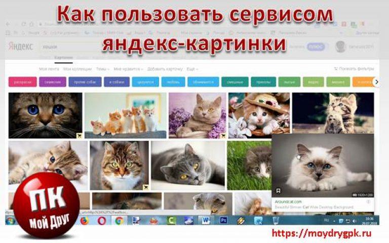 Фото, сервис яндекс картинки не работает