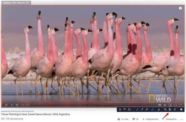 Заметим, что Screen Recorder сохраняет качество, поэтому вы можете записывать даже фильмы в HD.