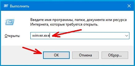 введите команду «winver.exe» (без кавычек)