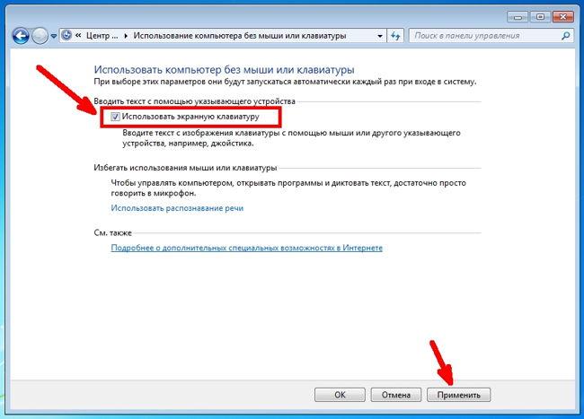 В следующем окне установите галочку напротив записи «Использовать экранную клавиатуру», и ниже жмем кнопку «ОК» или «Применить».