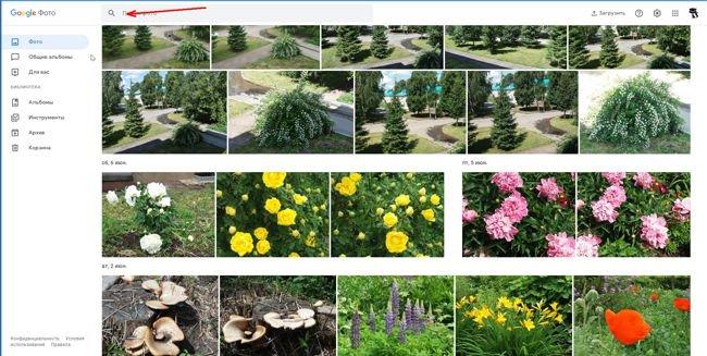 Одной из самых полезных функций этого сервиса является поиск изображений по лицам и объектам.