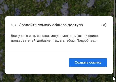 Жмем кнопку «Создать ссылку». 9