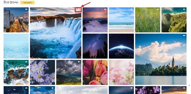 Если мы хотим установить какую-то одну картинку с анимацией, тогда жмем в правом верхнем углу на выбранной картинке на белый значок в виде камеры.